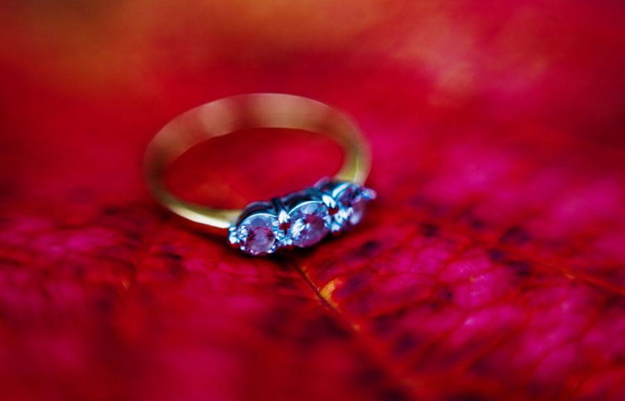 London wedding photographers, South London engagement photographer, engagement photographer, engagement ring on red leaf