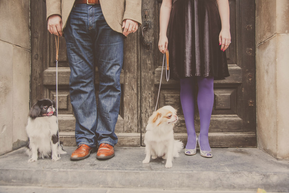 Engagement shoot with pug dogs St Pauls London, St Pauls wedding photographer, Photographer wedding St Pauls, Documentary wedding photographer London, Photojournalist wedding photographer London, South East London wedding photographer